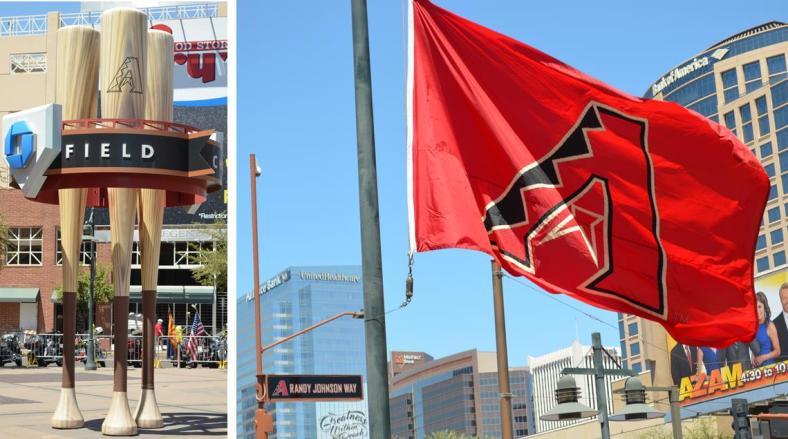 Bats, Johnson, flag